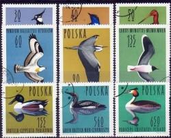 PLSu-1964-1490