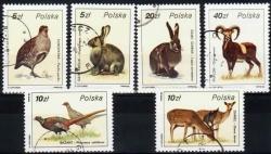 PLSu-1986-3019