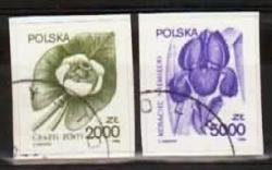 PLSu-1990-3277